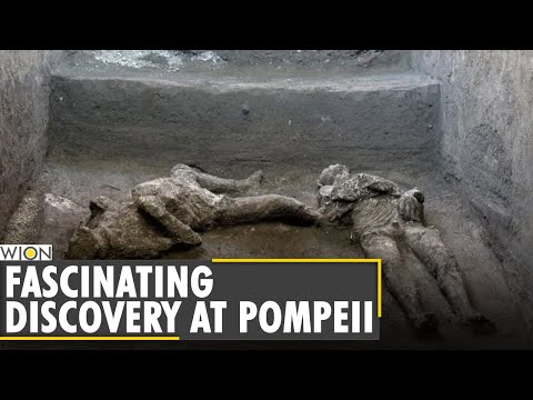 Well-preserved remains of two men discovered in Civita Giuliana | World News | WION News