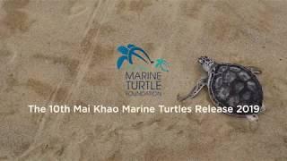 10th Mai Khao Marine Turtle Release Ceremony 2019