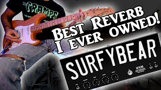 Surfy Industries - SURFYBEAR METAL - Clone of the Fender 6G15 Spring Reverb Tank!