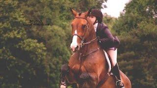 Страха в реальности нет (конный спорт)