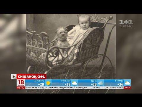 Фабрика Мебеля: производство детской мебели, оптом и