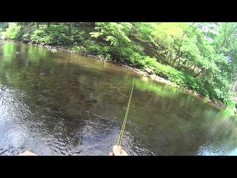 20150601 Savage River
