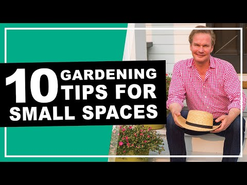 10-must-have-plants-and-gardening-tips-for-small-spaces-|-may-2020