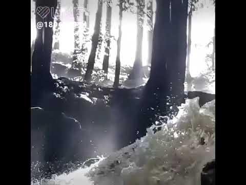 Короткий но мощный трейлер клип со смыслом о свободе воли и мотивации