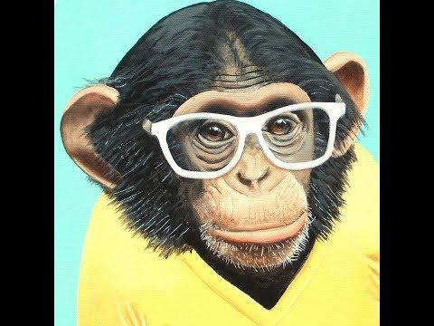 Είναι οι πίθηκοι οι πρόγονοί μας;