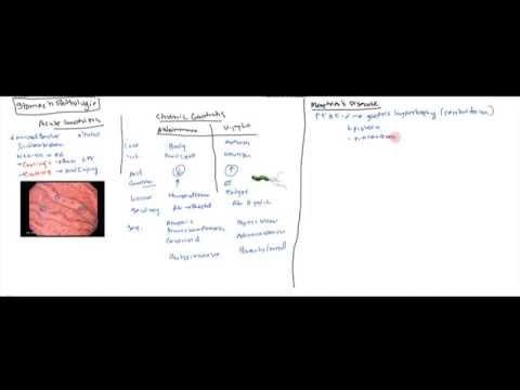 Stomach Diseases(Gastritis, Peptic Ulcer, Zollinger Ellison, Menetrier's, Adenocarcinoma)