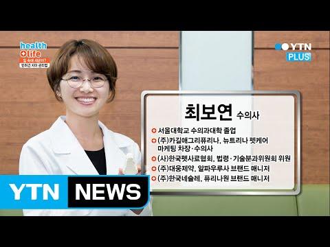 반려견 치아 관리, 양치질과 치석 제거 껌 활용하기! / YTN (Yes! Top News)