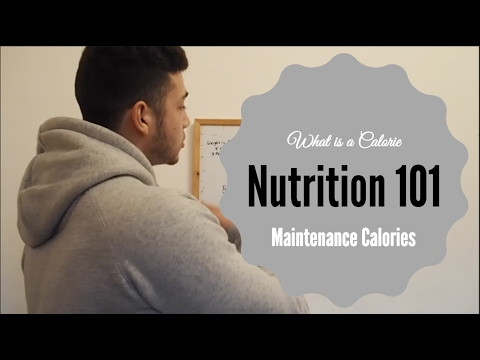 NUTRITION 101 : What Are Calories | How To Find Your Maintenance Caloriess