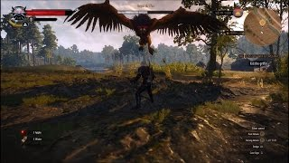 The Witcher 3: Wild Hunt Gameplay - Killing the Royal Griffin