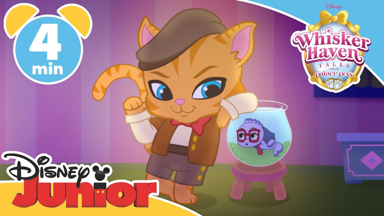 Whisker Haven Tales Chowing Down Disney Junior Uk