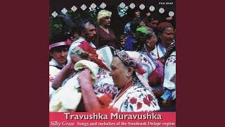 Tsyganochka (Little Gypsy)
