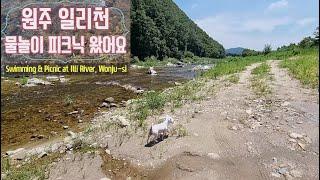 [SUB]#노지캠핑#원주#일리천#물놀이차크닉#반려견동반…