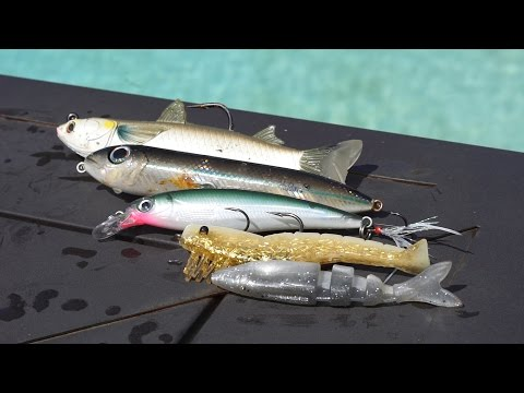TOP 5 INSHORE LURES