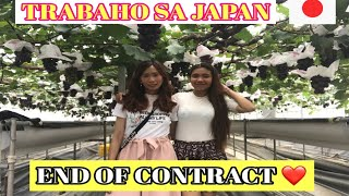 Trabaho sa Japan : Extend 2 years contract | From farmer to restaurant