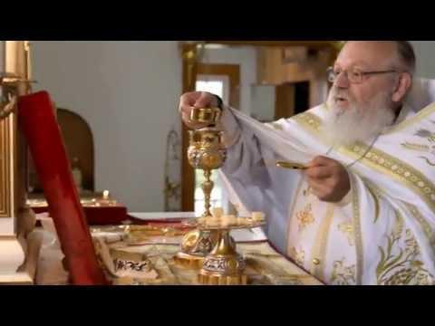 Liturgy Ukrainian Orthodox St Volodymyr   August 19, 2016