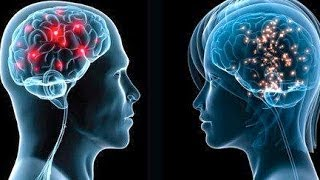 Men's and Women's Brains Are Wired Differently