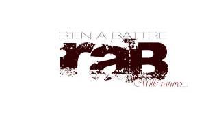 RAB (RIEN A BATTRE) - Intro feat. Bagheera