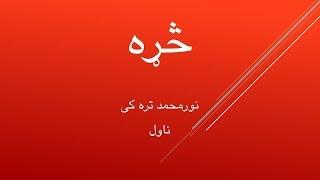 څړه  ناول  / نورمحمد تره کی