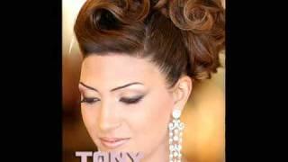 Tony El Mendelek 2009 bridal hairstyles