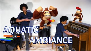 """Donkey Kong Country """"Aquatic Ambiance"""" (Solo Cover by Aaron Grooves)"""