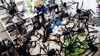 起きたら部屋が巨大クモだらけだった時の反応wwwww