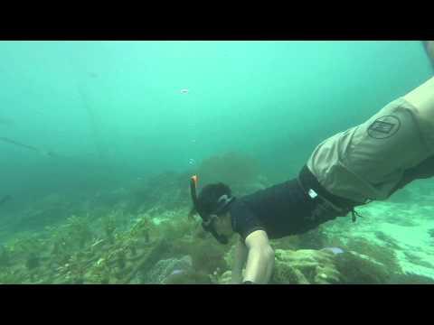 XIAOMI Yi Cam Underwater test at pahawang island Indonesia