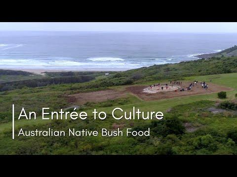 'An Entrée To Culture –Australian Native Bush Food'