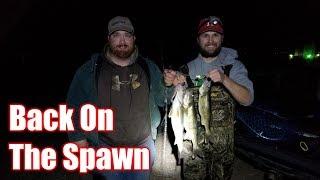 Back on the Spawn | Nebraska Walleye Fishing 2018