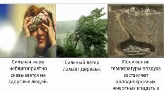 Экология. Экологические факторы
