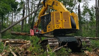 Video still for Roland Machinery, Komatsu Host Forestry Equipment Demo in Wisconsin
