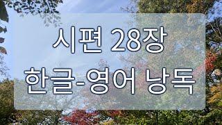 [시편 낭독] 28장 / 한글 + 영어 성경