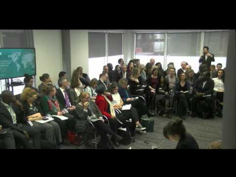 Private investment, public money:  evaluating development impact - Q&A 2