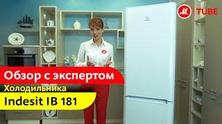 Видеообзор холодильника Indesit IB 181 с экспертом М.Видео(Холодильник Indesit - это пример сочетания практичности и невысокой стоимости для тех, кто ценит функционально..., 2014-08-08T12:21:39.000Z)