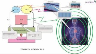 Видеоурок 3.  Тринити - прибор мультичастотной синхронизации. Режимы работы. Зеленская Елена.