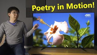 Sony A8 (A8H) 4K OLED TV Review