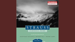 Eine Alpensinfonie (An Alpine Symphony) , Op. 64, TrV 233: Elegie