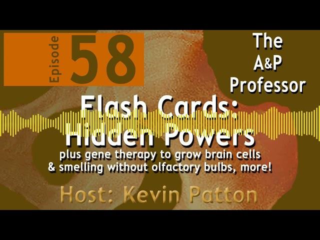 Flashcards: Hidden Powers | Episode 58