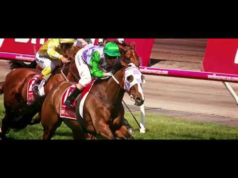 Melbourne Cup Carnival - TV Ad October 2016