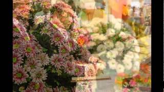 Выставка Цветы/Flowers 2011 на ВВЦ(Международная выставка Цветы - самая крупная профессиональная международная выставка класса