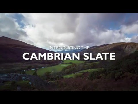 Introducing Cambrian Slate