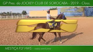 Apresentação dos animais GP Pres. do JOCKEY CLUB DE SOROCABA 2019 - Class.