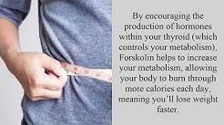 Is Ultra Forskolin 250 Safe