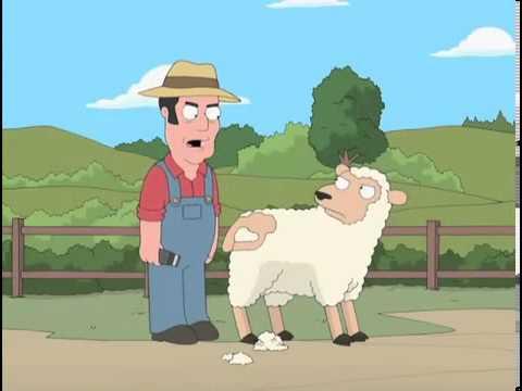 Sheep shearer family guy