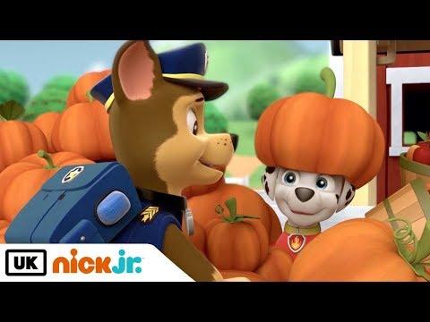 paw-patrol-|-best-friends---chase-&-marshall-|-nick-jr.-uk