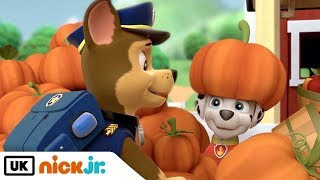 Paw Patrol | Best Friends - Chase & Marshall | Nick Jr. UK