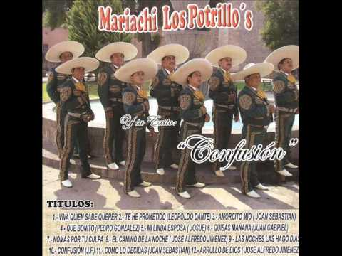 Mi Linda Esposa-Mariachi Internacional Los Potrillo's