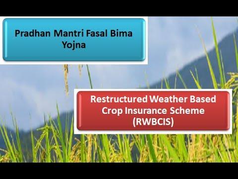 2.13.-indian-agriculture-_-pradhan-mantri-fasal-bima-yojna-_-weather-based-crop-insurance-scheme