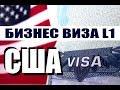 США. БИЗНЕС ВИЗА L1, Консультация Иммиграционного адвоката Виктории Шелегиной