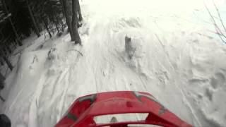 Буковель 2016. Небольшой фрирайд на лыжах. Ski freeride.(Легкий фрирайд в Буковеле между деревьев., 2016-02-23T06:49:19.000Z)