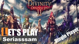 A new singleplayer beginning | Divinity: Original Sin 2 Gameplay –Part 1 - Lets Play [Single player]